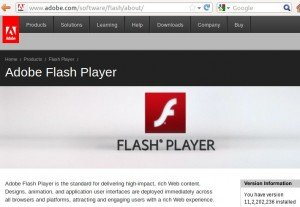 Install adobe flash player ubuntu 12.04 version check
