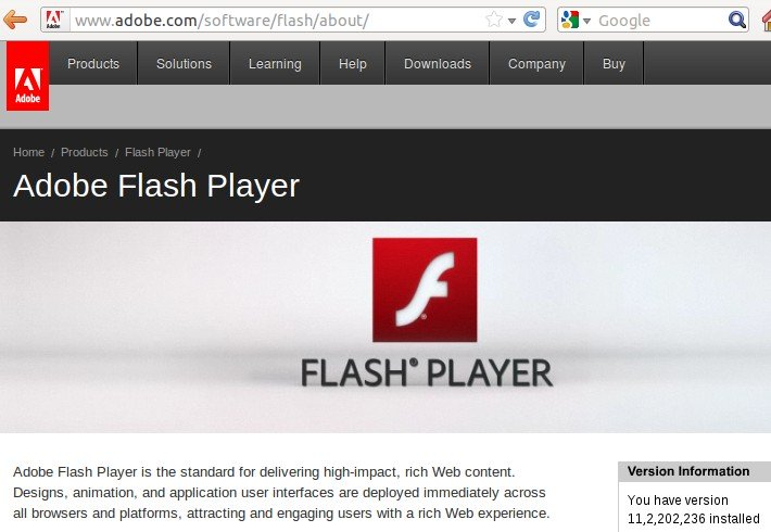 flash player latest version check