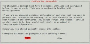 install phpmyadmin ubuntu 12.04