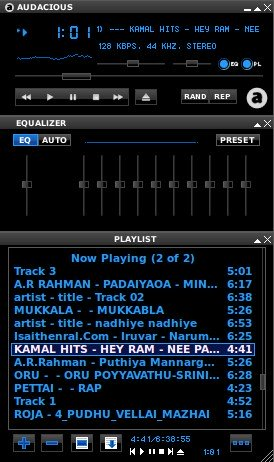Install audacious winamp interface